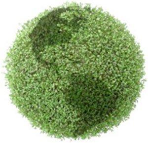 green plant image shaped like the earth
