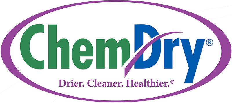 region chem dry logo