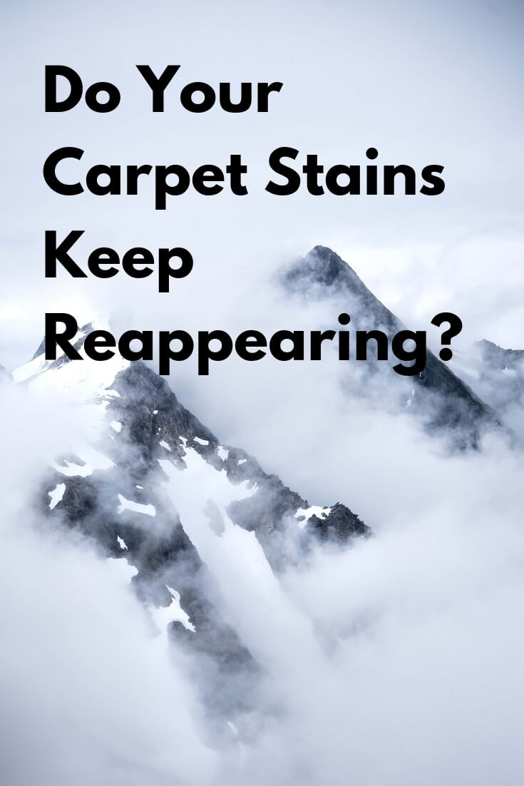 carpet stains can reappear graphic